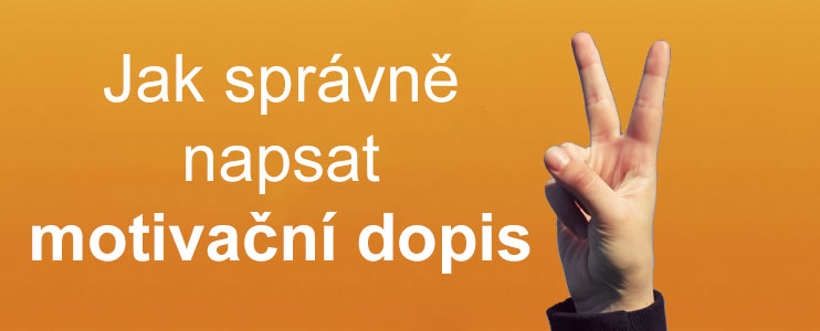 Zivotopis Tipy A Triky Kariera V Kostce Profesia Cz