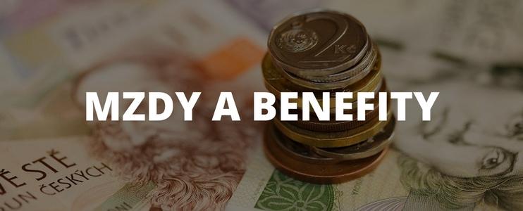 Mzdy a benefity